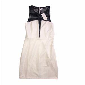 Bodycon Party / Cocktail Sheer Mini Dress Sz S